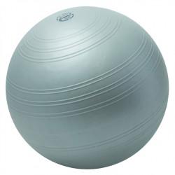 Palla ginnica Powerball...