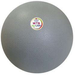 Palla medica WTB ad elevato grip da 1,35 kg.