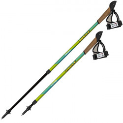 Coppia bastoncini Nordic Walking telescopici