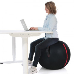Palla Office Ball Gymstick cm. 65-75